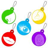 Five senses tag set poster