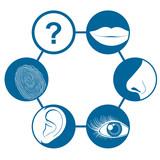 Six senses icons poster