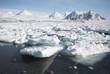 Frozen Arctic fjord