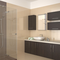 modern bathroom with dark wood equipment