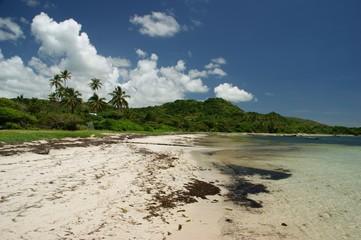 Plage de Cap chevalier - Martinique