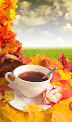 fall morning cup of tea