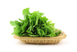 Escarole in Basket