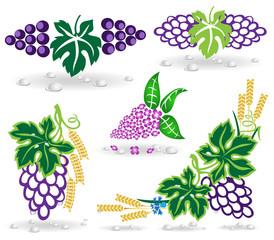 grape lilac icon dew