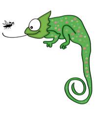 Chameleon_Fliege