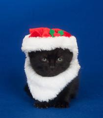 Black kitten in santa suit