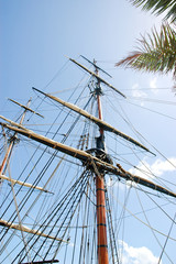 Mast and palm leaf