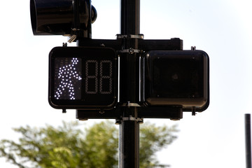 歩行者信号