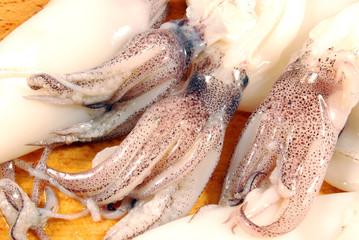 Calamari e ciuffi 006