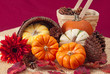 Ornamental pumpkins and pine cones in basket