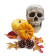 Skull with pumpkins, cones and autumn leaves