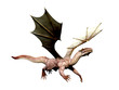 dragon flying out white background