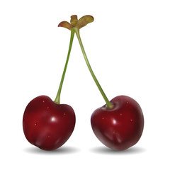 Pair of sweet cherries on white background.  Mesh is used