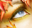 Autumn eyes Makeup