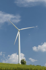 wind turbine generating energy