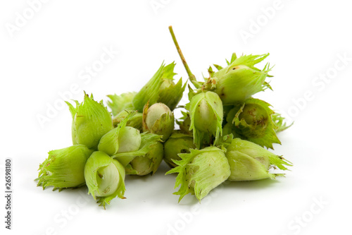 Group of hazelnuts