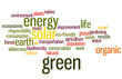 Environmental Word Cloud in Green