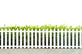 white picket fence strip with green garden bushes