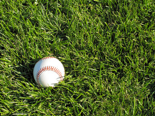 Baseball sitting on grassy field
