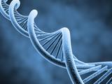 Fototapeta biologia - biotechnologia - Obrazy 3D