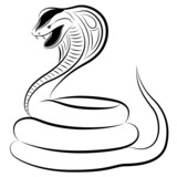 Cobra in the form of a tattoo poster