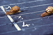 Leinwandbild Motiv Gagner une course en remportant la victoire