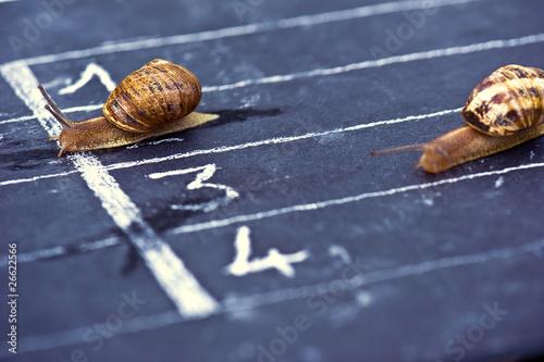 Gagner une course en remportant la victoire - 26622566