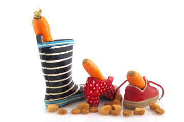 Sinterklaas carrots and shoes