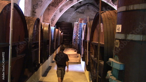Wine grower walking in a corridor surrounded by barrels