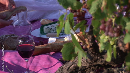 Close up of people with bread and red wine in a vineyard