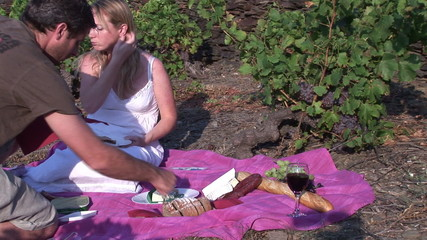 Wine growers doing a picnic in the middle of their vineyard