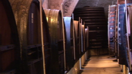 View of a corridor with wine barrels