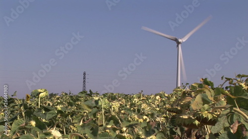One wind turbine in activity on a field