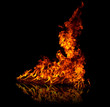 Fire with reflection on floor, isolated on black background