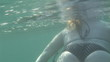 Rear view of a woman swimming underwater