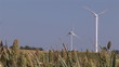 Wind turbines turning standin on a beautiful landscape