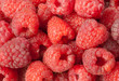 Raspberry close up