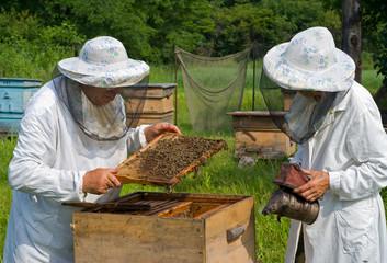 Beekeepers 8