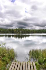 bog lake in etang de la Gruère