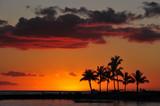 Fototapety sunset on the beach waikiki honolulu at the palms
