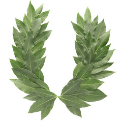 laurel wreath with clipping path