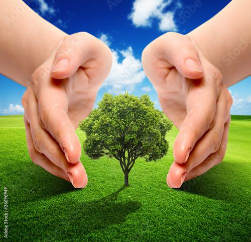 Accudiamo la natura