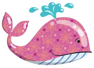 balenottera felice rosa