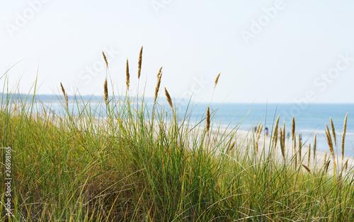 poster panorama am meer at the ocean fototapeten aufkleber poster leinwandbilder. Black Bedroom Furniture Sets. Home Design Ideas