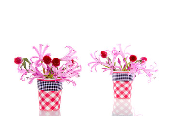 little vases with pink and red flowers isolated white background
