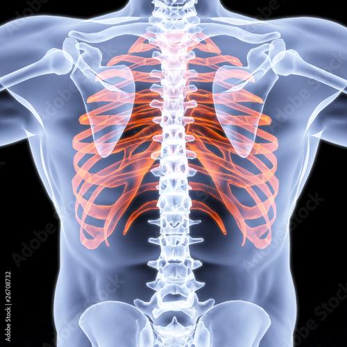 GamesAgeddon - magnifier x-ray - Lizenzfreie Fotos, Vektoren und ...