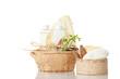 Tonschale gefüllt mit kosmetikschwamm und Schaf Seife
