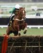 Horse Racing Jump - 26739300