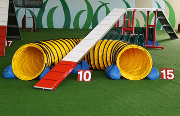 Agility Dog Equipment Passerella e Tubo
