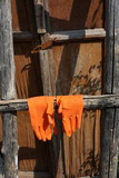 Orange rubber gloves hanging on an old wood ladder